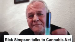 youtube_BudToday_CannabisTHCCuresCancerNotCBD_RickSimpsonInterview